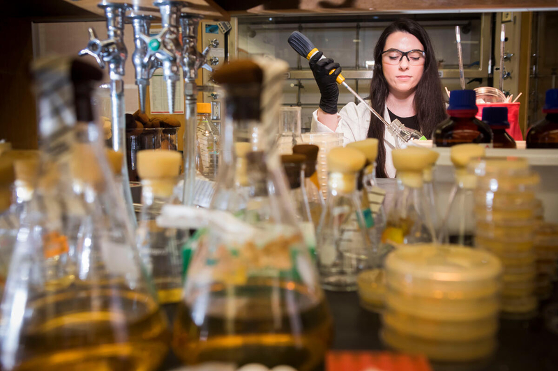 student researcher among beakers in Bachmann Lab