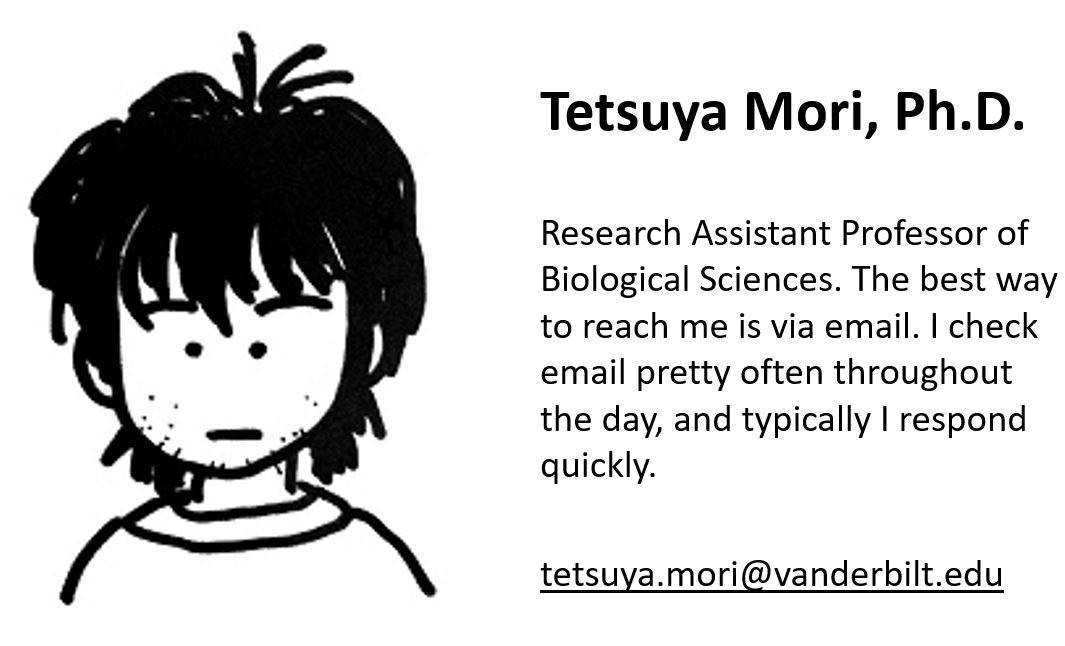 twtsuya_mori_biography