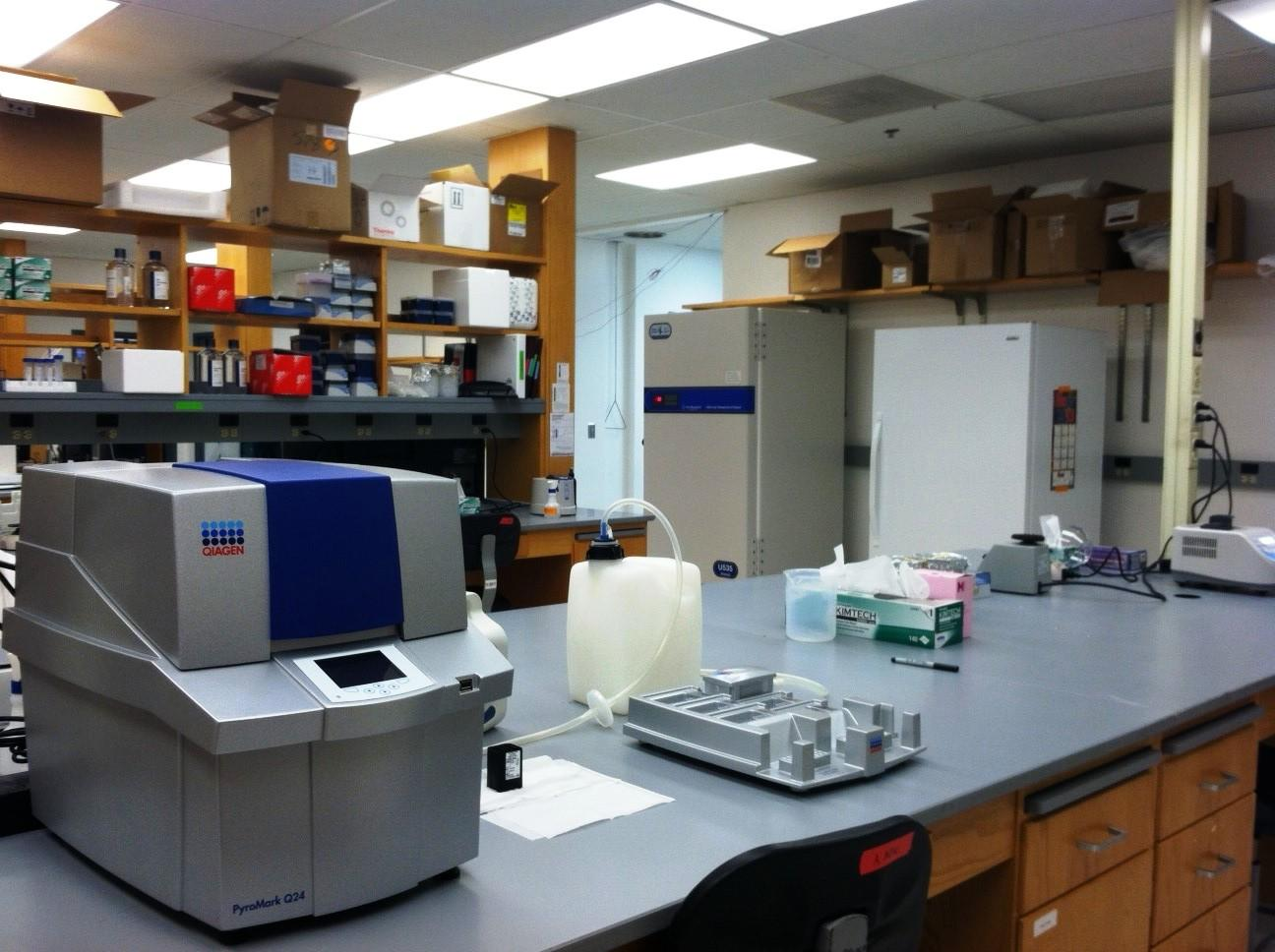 Anthropology Labs   Resources   Department of Anthropology ...